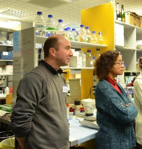 Visite des laboratoires, à la rencontre des équipes de recherche de l'IGBMC